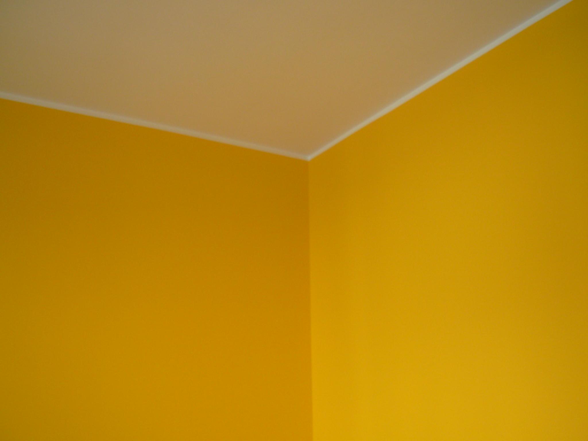 Pittura per interni lavabile confortevole soggiorno for Pittura per interni colori